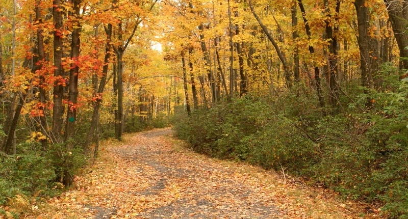 Northwest Indiana Parks and Trails